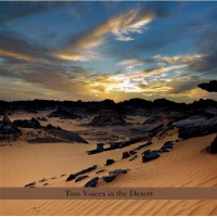 Perry Robinson And Burton Greene - Two Voices In The Desert