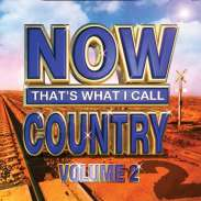 various artists - Now That's What I Call Country Vol 2